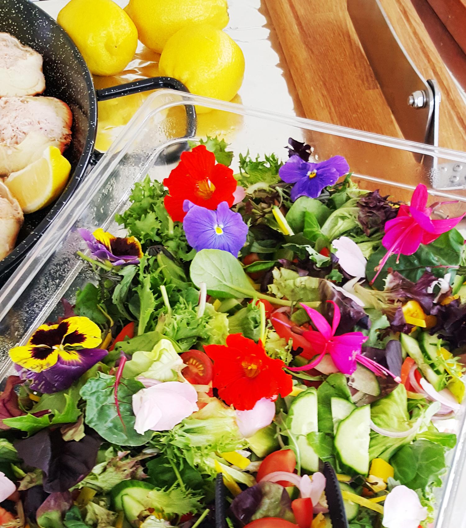 Salater Og Frukt